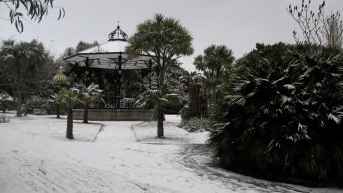 snow penzance cornwall morrab garden